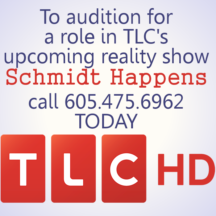 Schmidt Happens Auditions